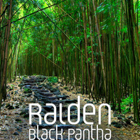 Raiden - Black Pantha
