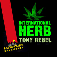 Tony Rebel - International Herb
