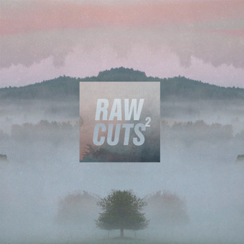 nohidea - Chillhop Raw Cuts 2