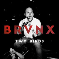 The Bronx - Two Birds