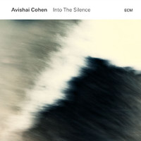 Avishai Cohen - Into The Silence