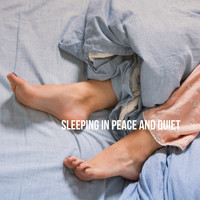Baby Lullaby, Sleeping Baby Music and White Noise For Baby Sleep - Sleeping in Peace and Quiet