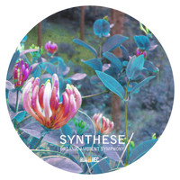 Synthese - Organic Ambient Symphony