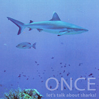 Once - Let's Talk About Sharks