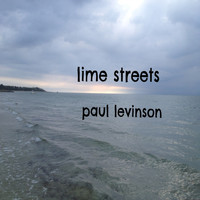 Paul Levinson - Lime Streets