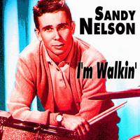 Sandy Nelson - I'm Walkin'