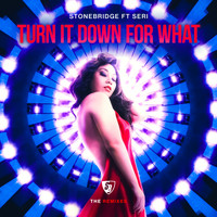 Stonebridge - Turn It Down For What (The Remixes)