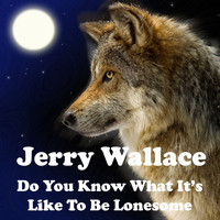 JERRY WALLACE - Do You Know What It's Like to Be Lonesome