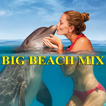 Various Artists - Big Beach Mix