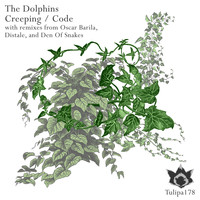 The Dolphins - Creeping / Code