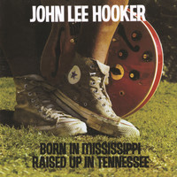 John Lee Hooker - Born In Mississippi, Raised Up In Tennessee