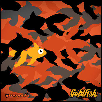 Goldfish - If I Could Find