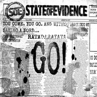 State Of Evidence - Go
