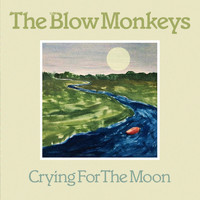 The Blow Monkeys - Crying For The Moon