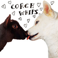 Coachwhips - Bangers vs. Fuckers (Remastered)