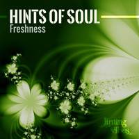 Hints Of Soul - Freshness