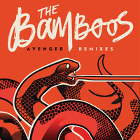 The Bamboos - Avenger Remixes