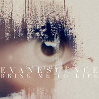 Evanescence - Bring Me to Life (Synthesis)