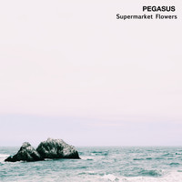 Pegasus - Supermarket Flowers