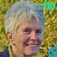 Sandy Rapp - Hardweather Friend (2017)
