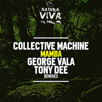 Collective Machine - Mamba