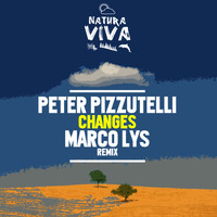 Peter Pizzutelli - Changes