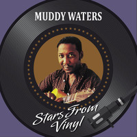 Muddy Waters - Stars from Vinyl