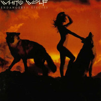White Wolf - Endangered Species