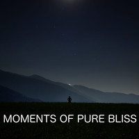 Golden Keys - Moments Of Pure Bliss