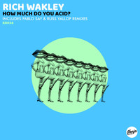 Rich Wakley - How Much Do You Acid?
