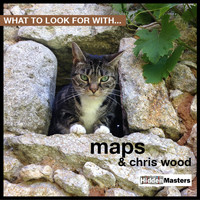 Chris Wood - What To Look For With…