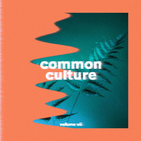 Connor Franta - Common Culture, Vol. VII