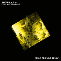 Audien - Hot Water (Two Friends Remix)
