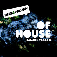 Samuel Tegaro - Of House (Housemusic)