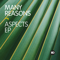Many Reasons - Aspects EP