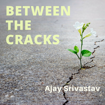 Ajay Srivastav - Between the Cracks