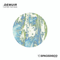 Demuir - After the Rain