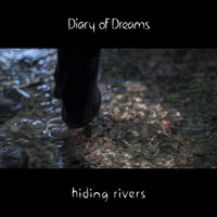 Diary of Dreams - Hiding Rivers