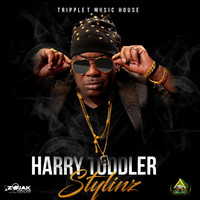 Harry Toddler - Stylinz - Single