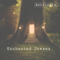 Antologie - Enchanted Dreams