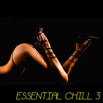 Various Artists - Essential Chill - 3