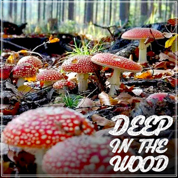 Various Artists - Deep in the Wood
