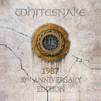 Whitesnake - Is This Love (87 Evolutions Version)