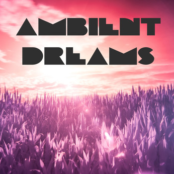 Various Artists - Ambient Dreams