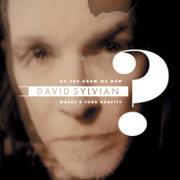 David Sylvian - Do You Know Me Now?