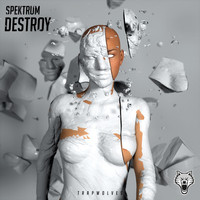 Spektrum - Destroy