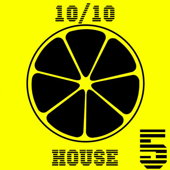 Various Artists - 10/10 House, Vol. 5