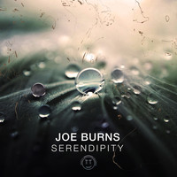 Joe Burns - Serendipity