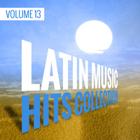 Dj in the Night - Latin Music Hits Collection, Vol. 13