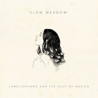 Slow Meadow - Lamellophone and the Gulf of Mexico